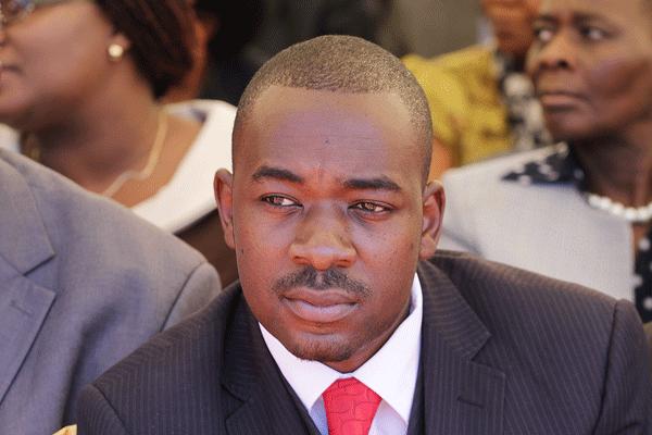 Nelson Chamisa Zimbabwe