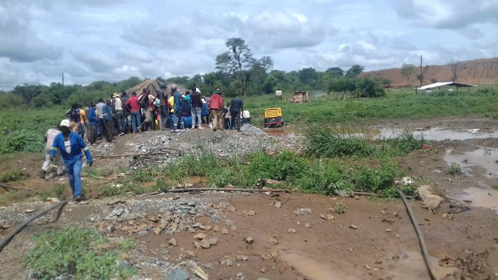 zimbabwe gold miners