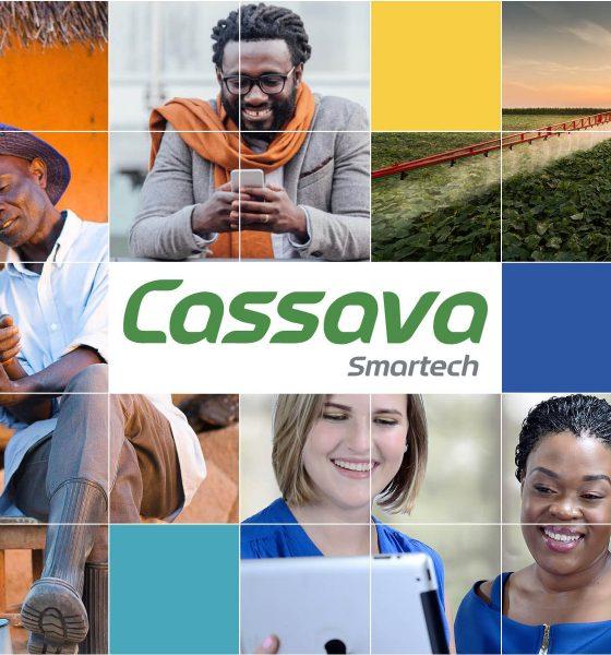 Cassava Smartech Zimbabwe