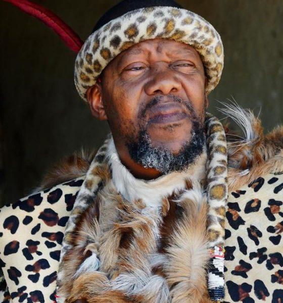 Chief Ndiweni